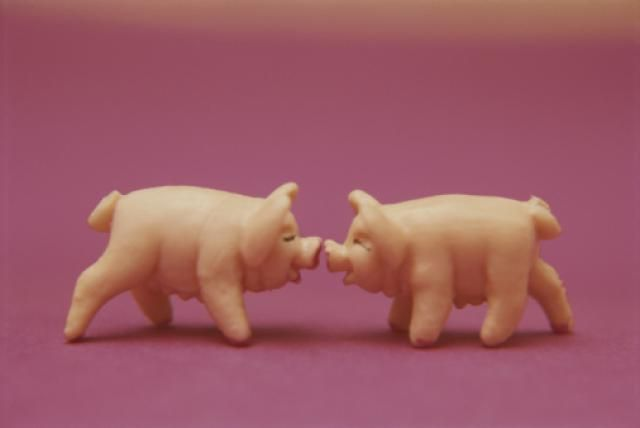 Marzipan Pigs - Copyright Roy Gumpel / National Geographic / Getty Images I probably need to explain what a hog jowl is. Some Yankees have never