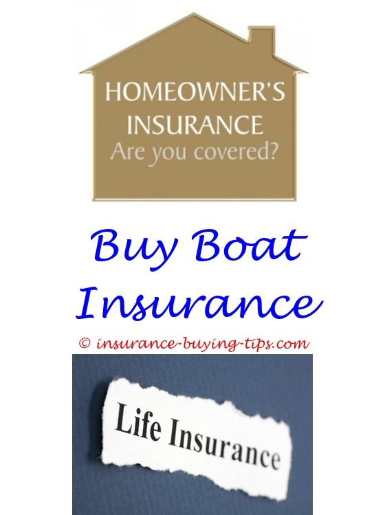 car-insurance-tips.com - do you need title insurance when buying a house.buy dental insurance texas buying rv insurance best buy appliance insurance 1339664275