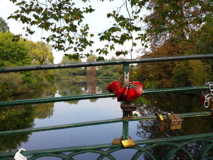 #Liebesschloss #Liebesschlösser Rombergpark #Rombergpark Dortmund #Liebesschlöser Dortmund
