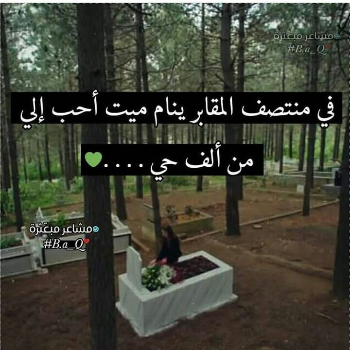 Pin By Rnooosha Rosh On قلم Dad In Heaven Quotes Dad In Heaven Sweet Qoutes