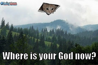 in honor of my very own ceiling cat-- now free to invade someone else's ceiling. Praise Jebuddah.