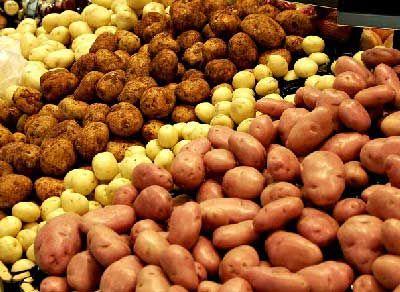 La pomme de terre reste un légume très abordable qu'il faut savoir accommoder afin de ne pas se lasser. La galette aux pommes de terre va tous nous régaler.