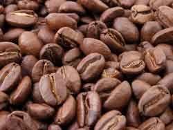 Обжарка кофе. Этапы и степени обжарки кофе. Ростер.