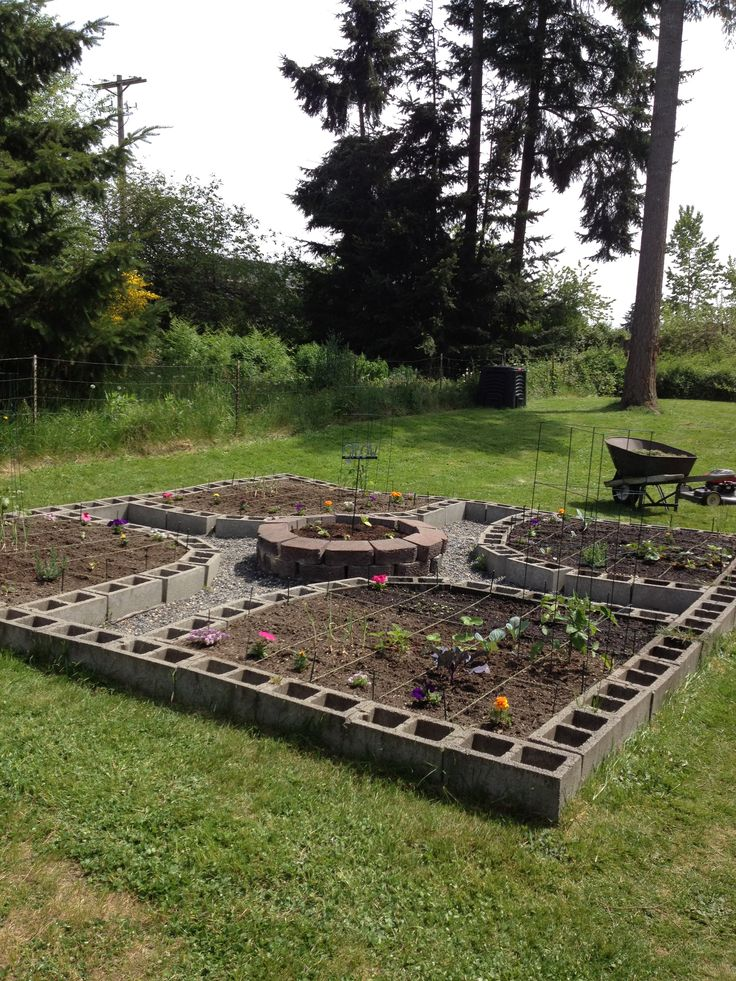My amazing cinder block square foot garden planting