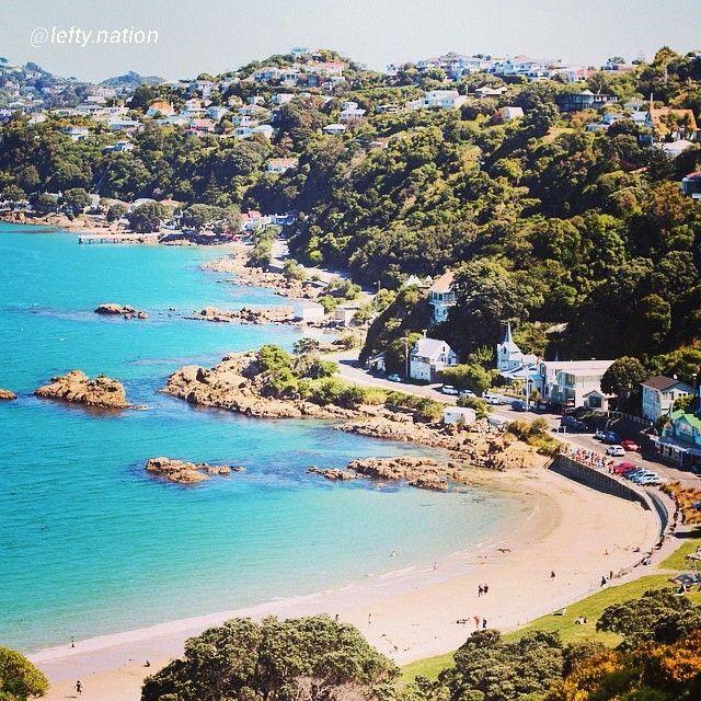 Scorching Bay, Wellington, New Zealand