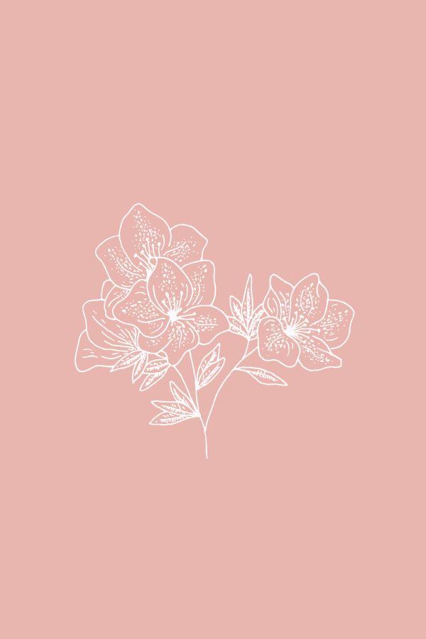 Azalea Floral Illustration – Die Sprache der Blumen – Bea & Bloom | Creative De …