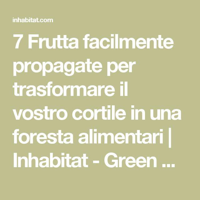 7 Frutta facilmente propagate per trasformare il vostro cortile in una foresta alimentari | Inhabitat - Green Design, Innovazione, Architettura, Green Building
