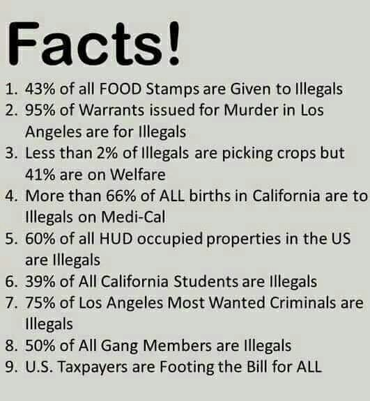 Oh my God. Please don't believe this You can't even record statistics about illegal immigrants because they have no papers.