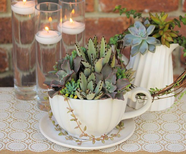 Large Ceramic Tea Cup And Jug Filled With A Stunning Combination Of Textures Colours From Succulent Wedding CenterpiecesCentrepieces