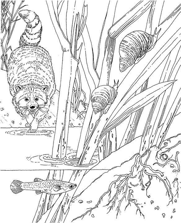 Más de 1000 imágenes sobre Dibujos para madera y vidrio en Pinterest ...