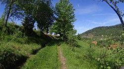 [Vosges] Le Rouge Gazon Cet itinéraire va vous conduire de Bussang au Rouge Gazon par de très belles sentes dans la forêt. Vous pourrez profiter de beaux points de vue sur la vallée des Charbonniers. Vous passerez par les magnifiques lacs des Neuf Bois pour arriver à la ferme auberge du Rouge Gazon. Belle descente pour le retour.  Vidéo : https://www.youtube.com/watch?v=dQB5HdqZegI&t=74s