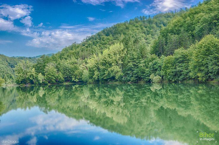 Lacul Vida, dimineata   Bihor in imagini