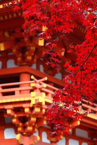 神社の赤とマッチ!