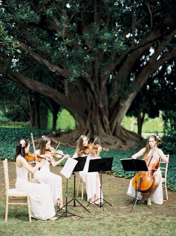 Classic string quartet: Photography : Katie Grant Photography Read More on SMP: http://www.stylemepretty.com/2016/07/14/fall-australian-garden-wedding/