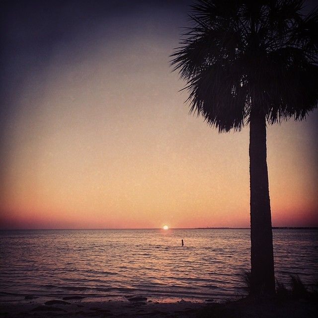 Palm Harbor, FL in Florida