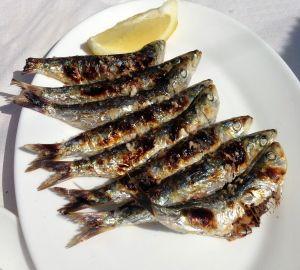 Plate of sardines, Nerja Tapas