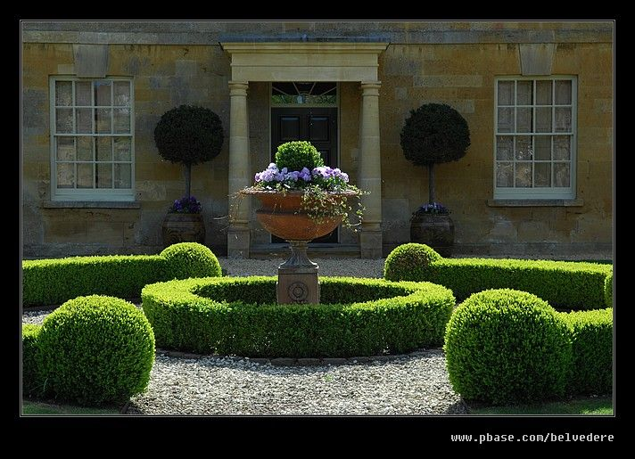 Great shot - the light's perfect just grazing the top of the box topiary.