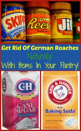 Get Rid Of German Roaches Naturally! 2 tablespoons peanut butter 1 cup baking soda or you can use boric acid 1 cup sugar or you can use honey enough water to make a thick paste Mix all ingredients together