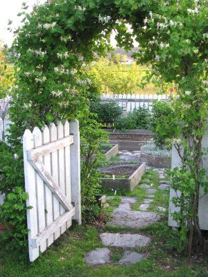 "Garden gate.......yes!!!! with/under my ""arbor-to-be"""