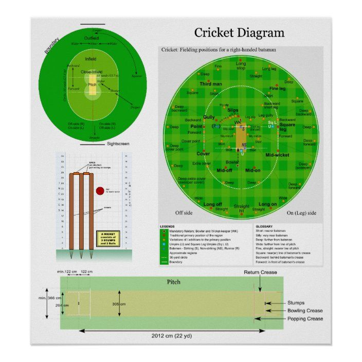 How Home Warranties Can Help You Get Rid Of Crickets Getting Rid Of Crickets Home Warranty Cricket