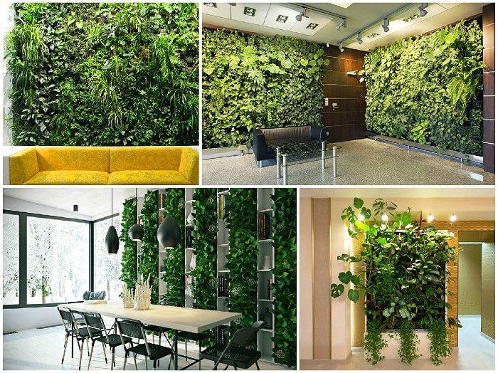 Новгородская Бытовочка | Вертикальные сады – озеленение своими руками | http://stroika-novgorodkrai.ru