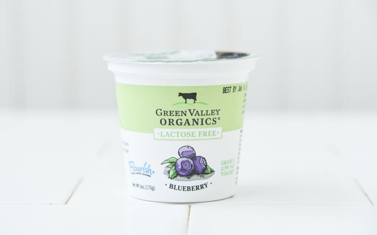 Green Valley Organics Organic Lactose Free Blueberry Yogurt