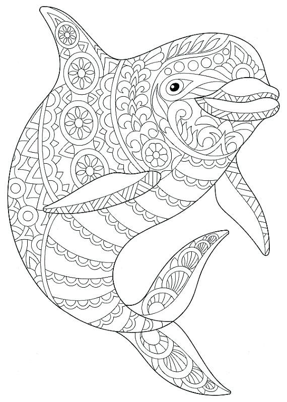 coloring pages dolphins extraordinary dolphins coloring