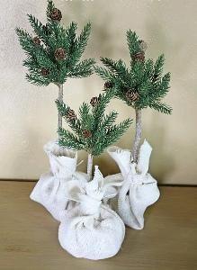 DIY Topiary  : DIY Evergreen Topiary |