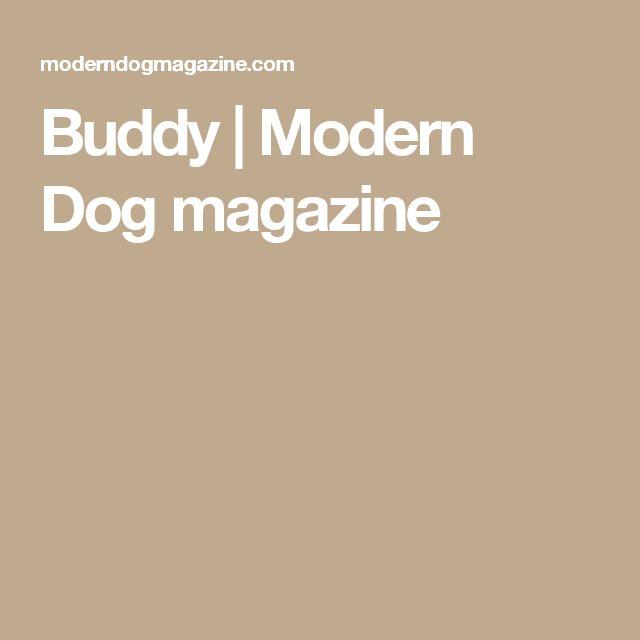 Buddy   Modern Dog magazine