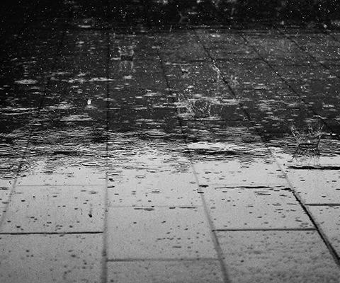 Does wet weather affect the value of a property on auction day?