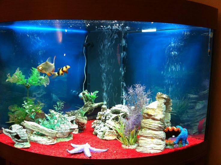 198 best breath taking aquariums images on pinterest for Black fish tank gravel