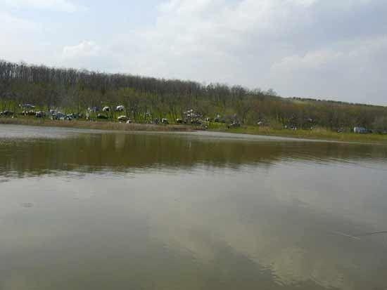 lacul vanatori galati - Căutare Google