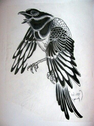 Traditional magpie tattoo - photo#41