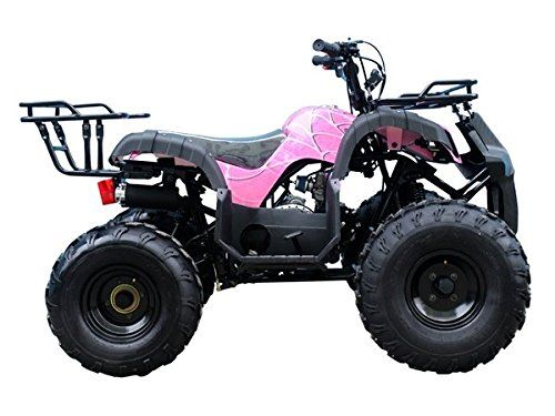 BUY TaoTao Atv TForce 110cc Big Rugged Wheels ( Pretty Pink Spider )