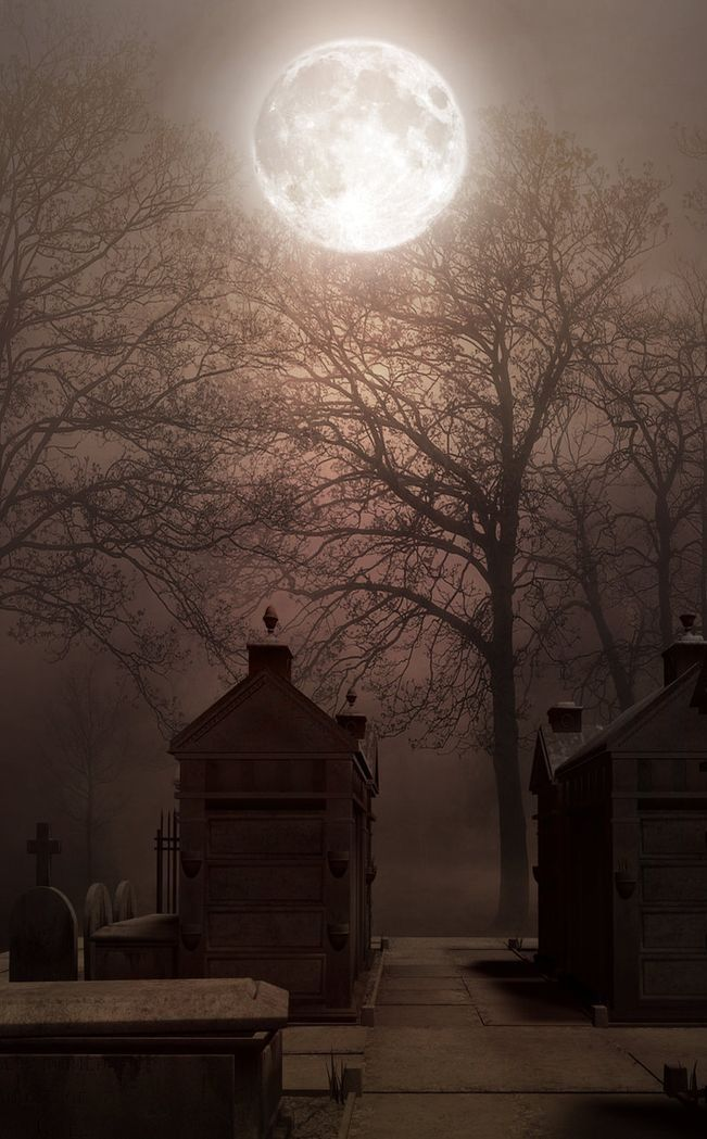 And his eyes have all the seeming of a demon's that is dreaming...And the lamp-light o'er him streaming throws his shadow on the floor...And my soul from out that shadow that lies floating on the floor... Shall be lifted—Nevermore... (Poe)
