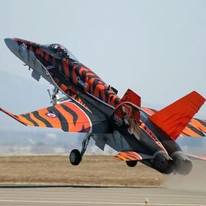 "CF-18 Hornet specially painted for the ""Tiger Meet."" Uys, this ones for you buddy"