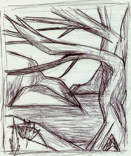 Contour Line Drawing Of Natural Forms : Best natural forms pen and ink images on pinterest