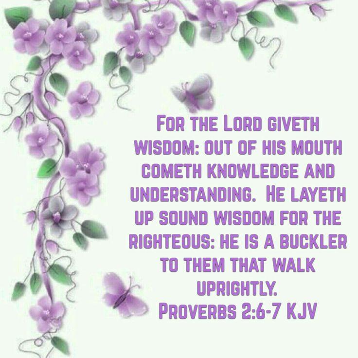 Proverbs 2:6-7 (KJV)