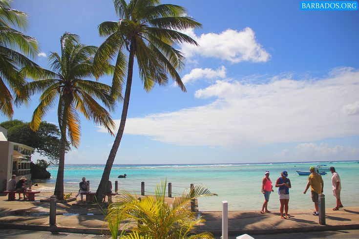 A typical 'winter' day in Barbados :)