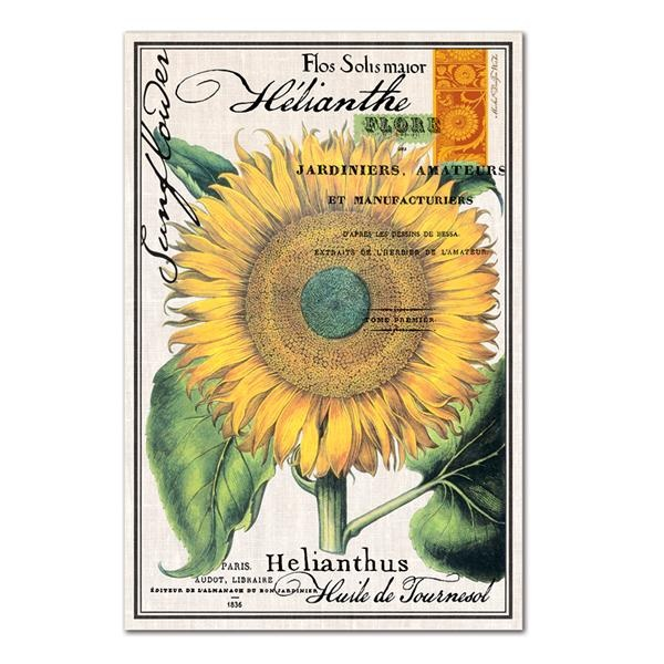 Sunflower Kitchen Towel Available at Petals and VinesSunflowers Dishtowel, Sunflowers Kitchens, Kitchens Towels, Design Work, Work Cotton, Kitchen Towels, Home Kitchens, Cotton Kitchens, Michele Design