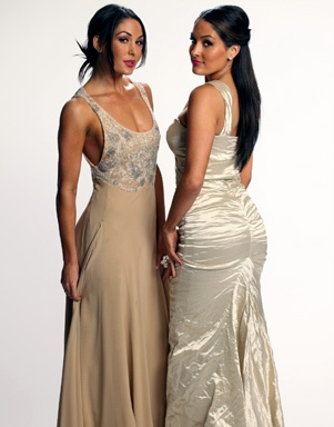 The Bella Twins Hall of Fame 2011 WWE Photo Shoot
