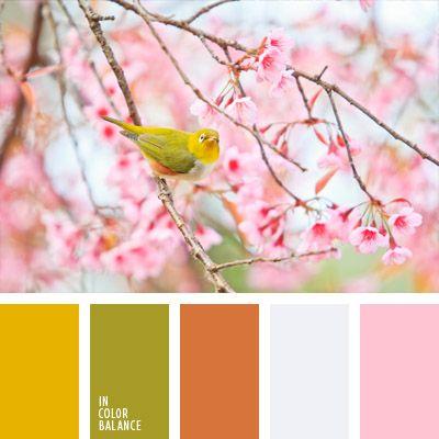amarillo, anaranjado, color amarillo canario, colores suaves, de color verde lechuga, matices de colores pastel, paleta de colores para decorar una boda, paleta de colores para una boda, rosado, selección de colores para una boda, tonos pastel claros, tonos suaves.