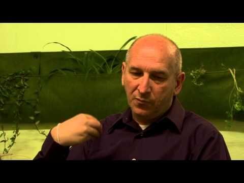Vue d'ensemble de l'économie collaborative avec Michel Bauwens - YouTube