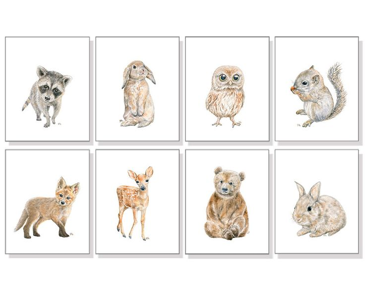 Woodland Animal Prints Forest Animal Prints Woodland Nursery Art Gender Neutral Art Bear Deer Bunny Rabbit Fox Squirrel Owl Raccoon Set of 8 by jamesriverstudios on Etsy https://www.etsy.com/listing/207965278/woodland-animal-prints-forest-animal