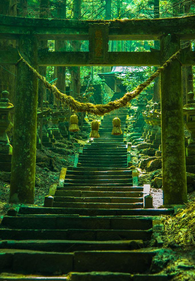 Into the green – Kumanoza shrine, Kumamoto, Japan. A mesmerizing place to add to your travel your bucket ...