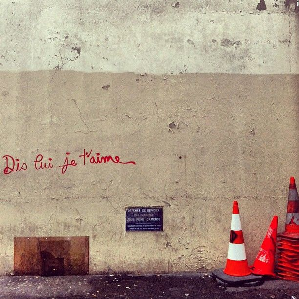 jeveux-oublier:  french-girl-in-paris:  Paris (source)  je n'en ai plus le courage