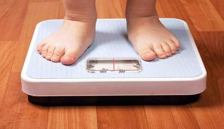 #Ofrece Secretaria de Salud atención para sobrepeso de niños y jóvenes - Quadratín Querétaro: Quadratín Querétaro Ofrece Secretaria de…