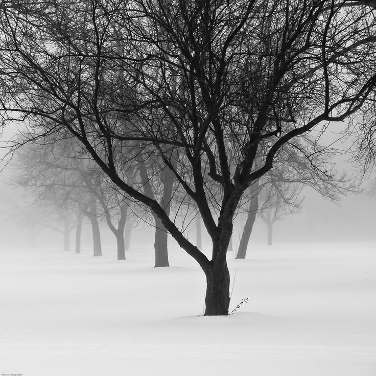 Michael Knapstein. World famous photographer from Middleton, WI. Amazing black and white photography...
