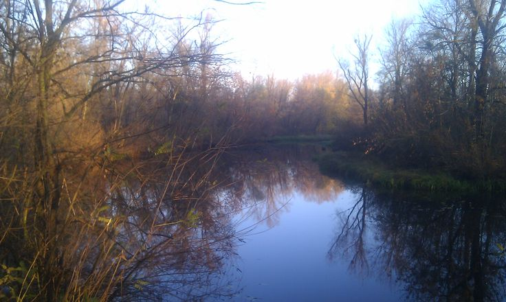 Залив реки Десенка.