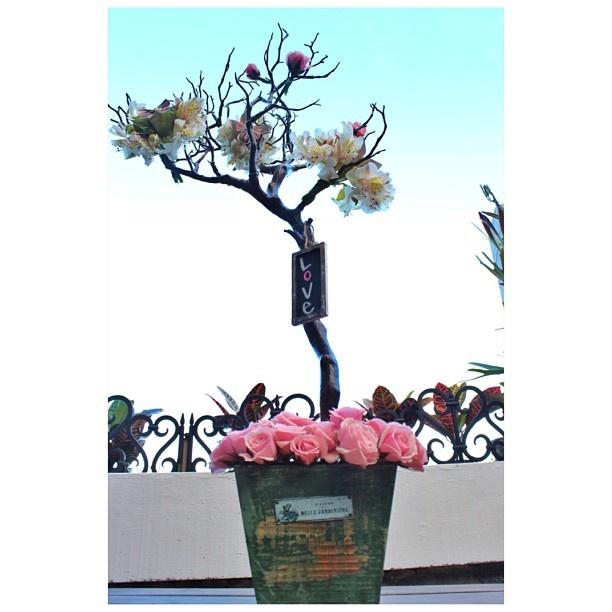 DECO Love by @Jane Spaulding Dougherty   #wedding #boda #decoracion #vintage #love #amor #creative #flores #flowers #crafts #decolores #caracas #novia #bride #fiesta #party #venezuela #decoration #insta_ve  #handmade #hechoamano #gift #original #instavenezuela #weddingdesigner #Padgram
